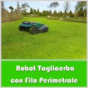 robot tagliaerba con filo perimetrale